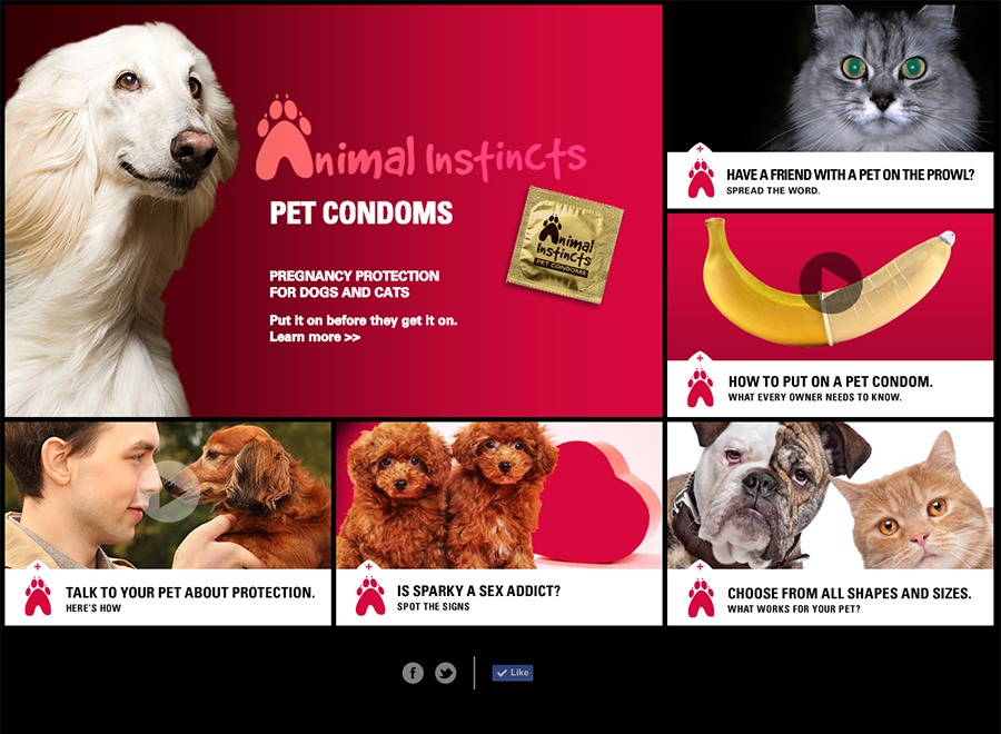 Animal Instincts Pet Condoms website