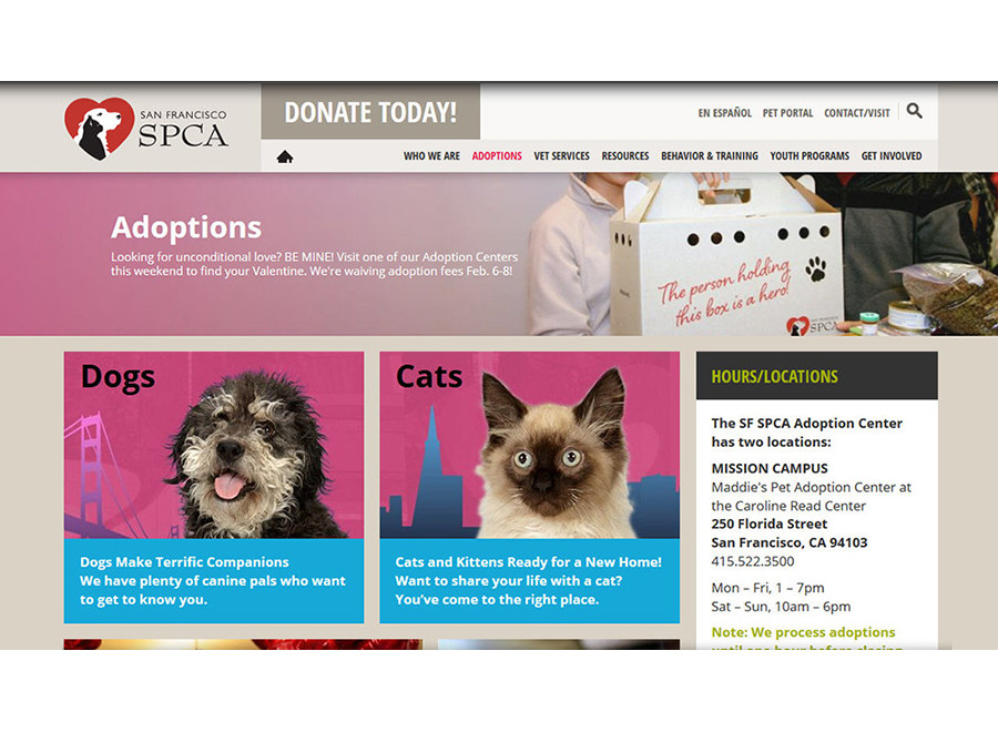 Adoptions page themed for Be Mine event