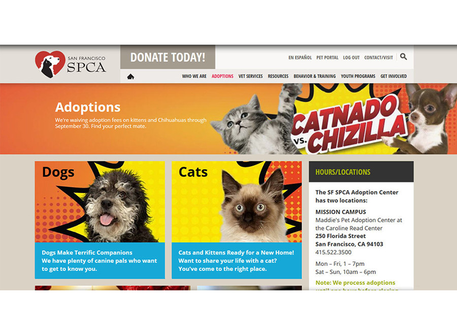Adoptions page themed for Catnado vs. Chizilla event