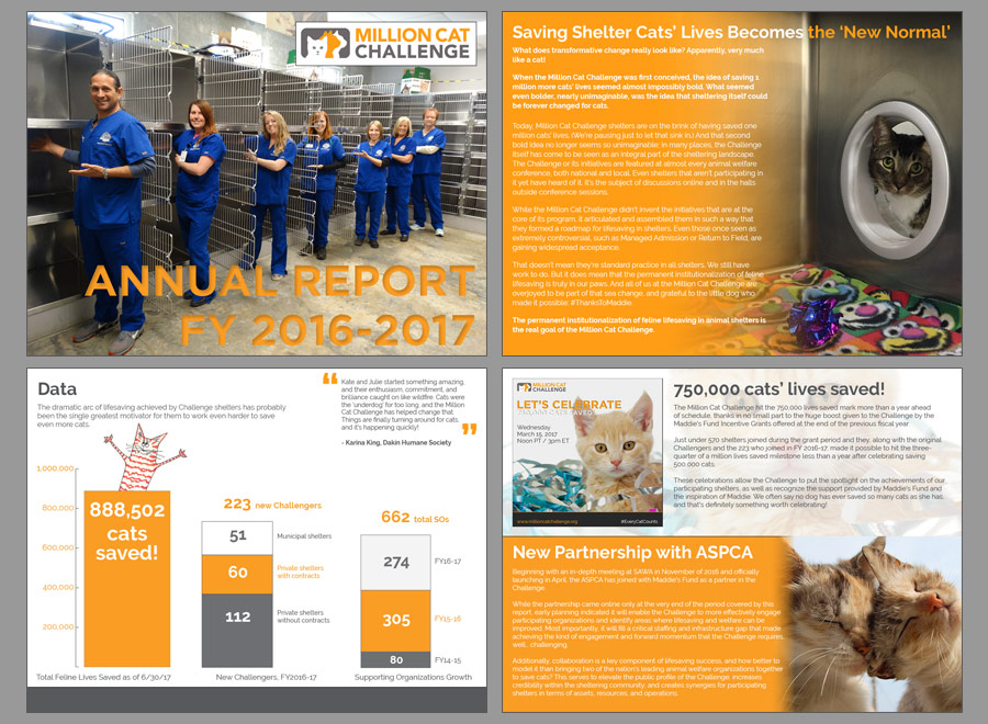 Million Cat Challenge Annual Report 2016-2017, pp 1-4