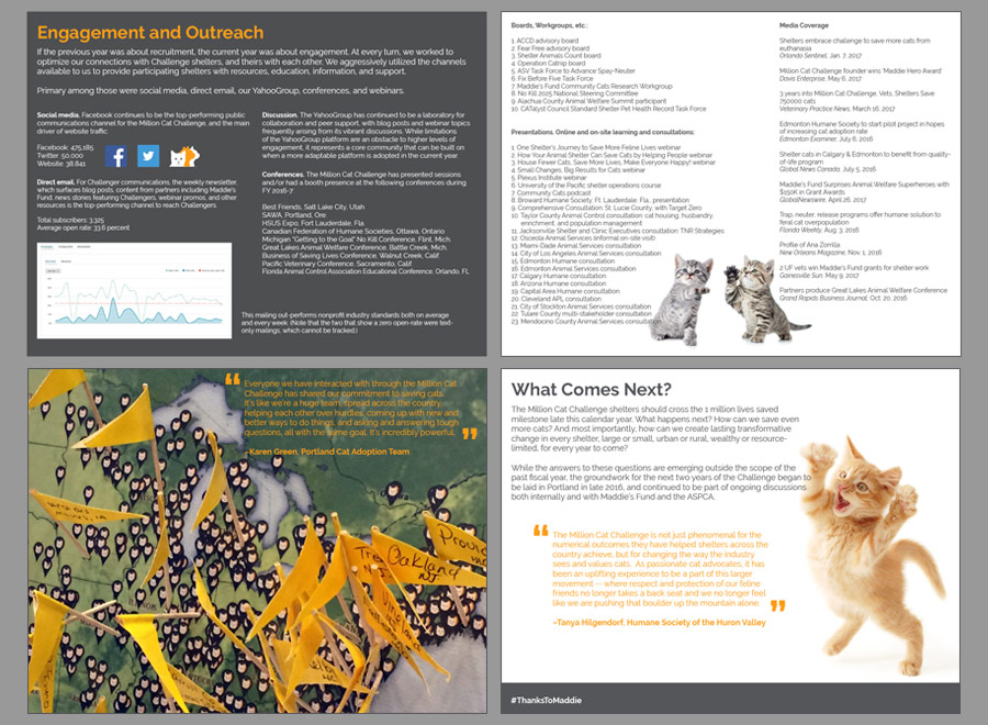 Million Cat Challenge Annual Report 2016-2017, pp 5-8