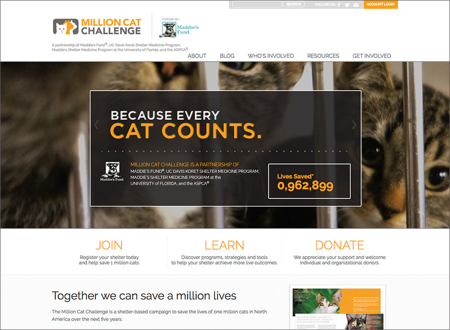 Million Cat Challenge home page