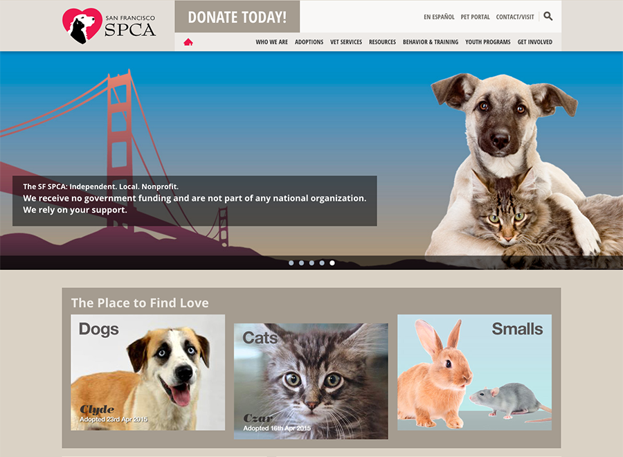 SF SPCA home page